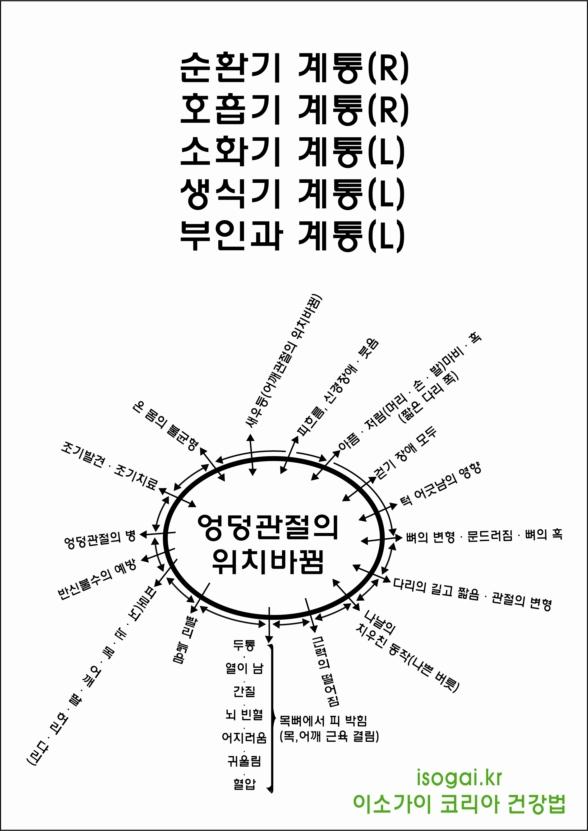 2 . 엉덩관절 어긋남의 영향
