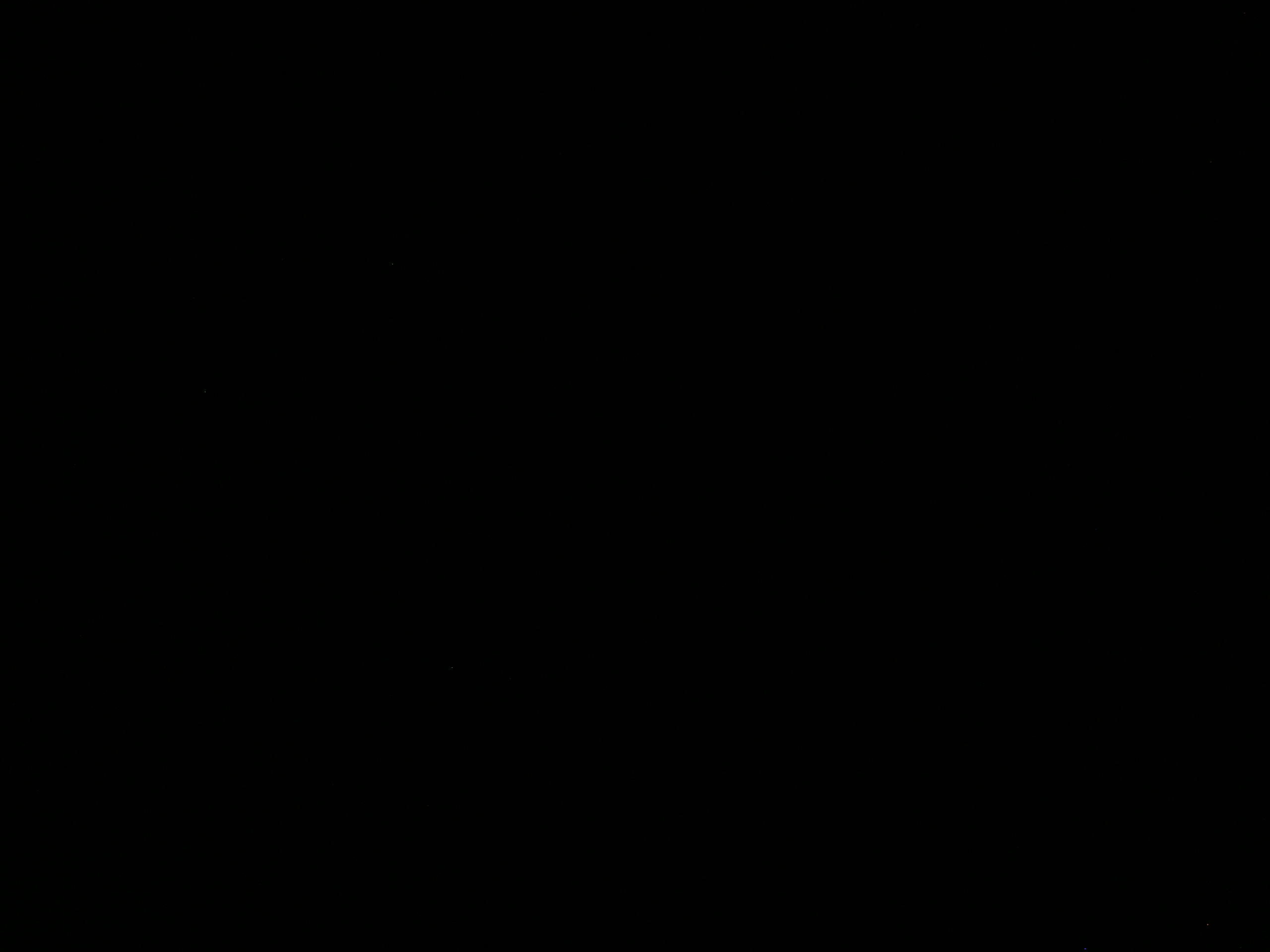 A1 불량화소 체크